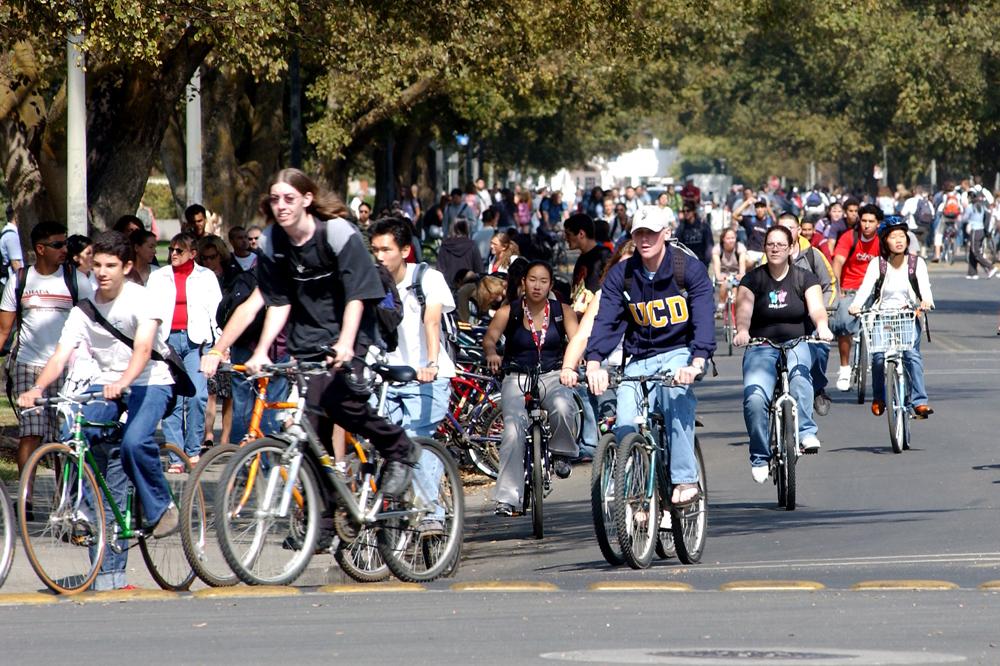 Bike Rentals UC Davis